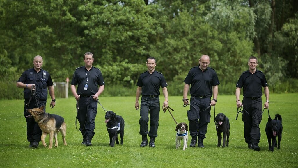 Dogs With Jobs: General Purpose Police Dogs