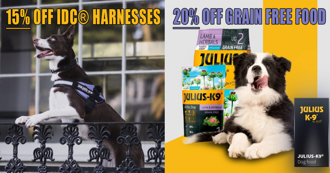 Flash Sale: 15% Off Harnesses & 20% Off Dry Food