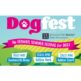Dogfest 2019