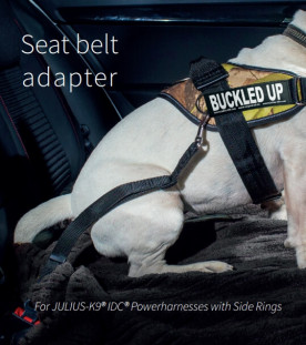 correctly fitted dog harness and seat belt adapter