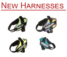 New IDC Harnesses in Stock