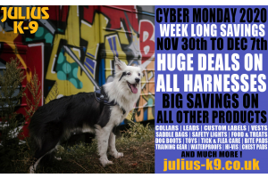 julius k9 cyber monday deals