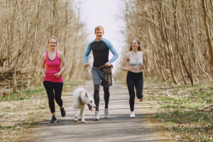 three joggers running with their dog in woods