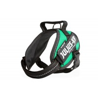 Italian Flag Dog Harness - Extra Extra Small Dog (mini-mini)