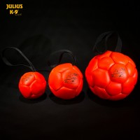Show Training Ball - Orange