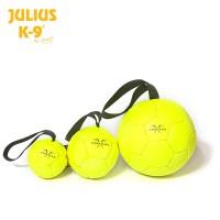 Show Training Ball
