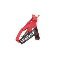 Color & Gray series IDC®-Belt harness  red mini