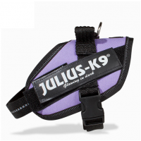 Purple Collar IDC Powerharness