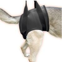 Rehabilitation Harness