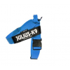 IDC Belt Harness Blue