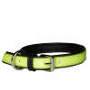 IDC Lumino Fluorescent Collar