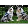 large fluorescent dog harness