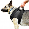 Rehabilitation Harness Front