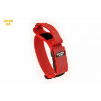 Dog Safety Collar with Handle - Red - Small (40mm)