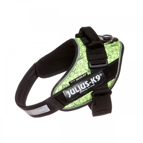 attila coloured harness