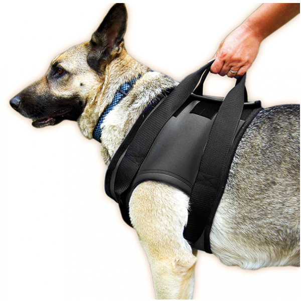 Dog Harness To Support Back Legs Uk