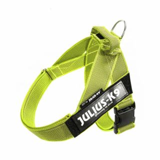 Color & Gray® IDC® Belt Harness - Neon - Mini-Mini