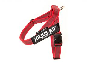 Color & Gray® IDC® Belt Harness - Red - Mini-Mini