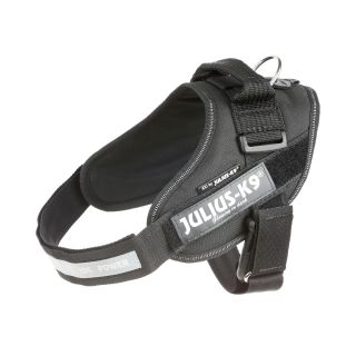 black IDC Powerharness with safety lock