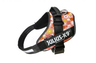 IDC Powerharness - Size 3 -Pink Floral