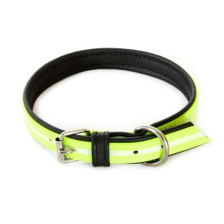 IDC Lumino Fluorescent Dog Collar - Neon - 45cm