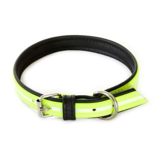 IDC Lumino Fluorescent Dog Collar - Neon - 50cm