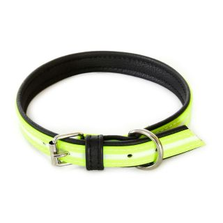 IDC Lumino Fluorescent Dog Collar - Neon - 60cm