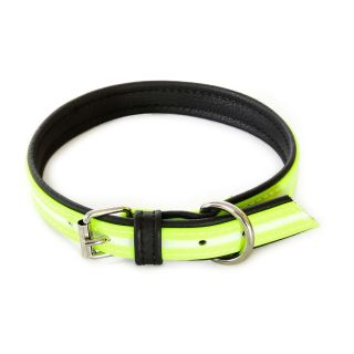 IDC Lumino Fluorescent Dog Collar - Neon - 70cm