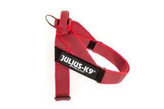 Color & Gray series IDC®-Belt harness red 0