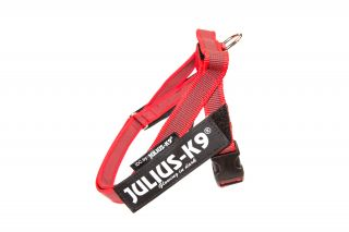 Color & Gray series IDC®-Belt harness  red mini