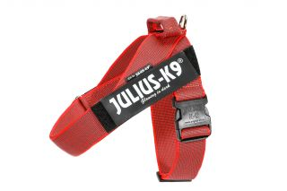 Color & Gray series IDC®-Belt harness red size 2