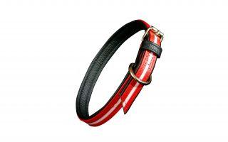 IDC Lumino Fluorescent Dog Collar - Red - 70cm