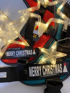 Limited Edition Christmas Harness Label for Harnesses, Collars and Side Bags (SINGLE)