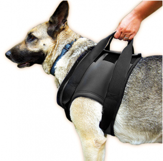 Rehabilitation Support Harness - for Front Legs