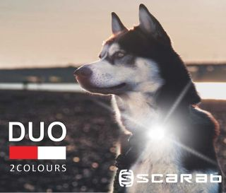Scarab™ DUO LED Dog Collar Light