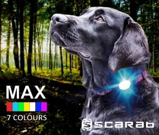 Scarab™ MAX LED Dog Collar Light