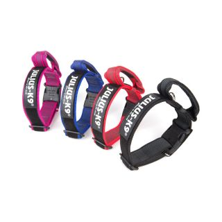 all weather dog collars with handles in four collars