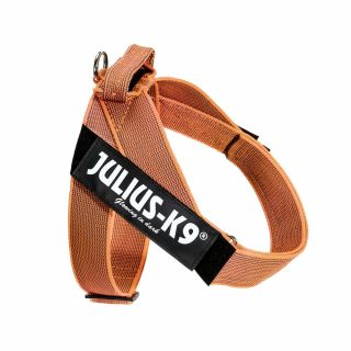 Color & Gray® IDC® Belt Harness - Orange - 1