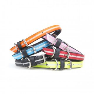 IDC lumino dog collars in all colours