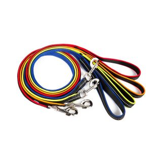 IDC powair dog leads in all colours