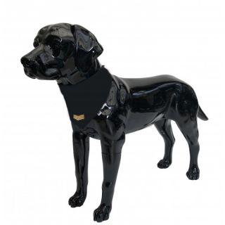 Black Dog Bandana with Sergeant Badge Medium