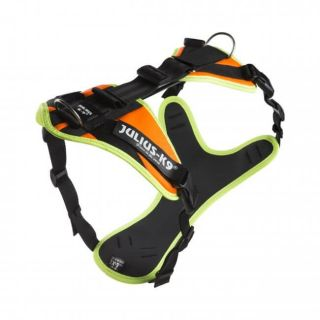 man tracking dog harness side view