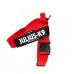IDC Belt Harness Red