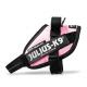 Pink Collar IDC Powerharness
