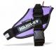 IDC Powerharness Purple - Size 0