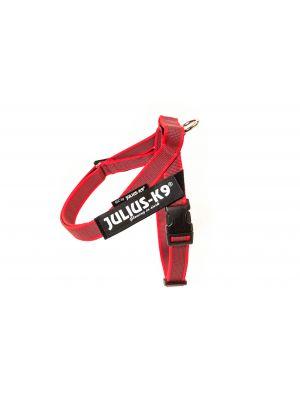 IDC Belt Harness - Size Mini-Mini - Red - Color & Gray Series