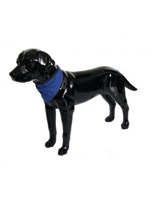 Blue Dog Bandana Large