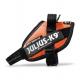 Orange Collar IDC Powerharness