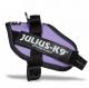 Purple Collar IDC Powerharness
