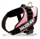 Pink Collar IDC Powerharness
